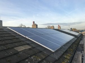 Solar PV pigeon netting protection